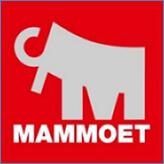 """ООО """"Маммут Рус"""""""